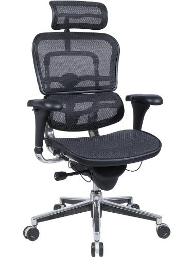 Eurotech Ergohuman Comfortable Chair