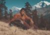 Mahabir-Pun-Nepal