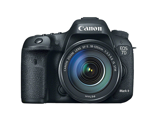 Canon 7D Mark II for Wildlife Photography