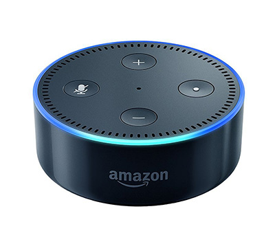 Echo Dot christmas gift