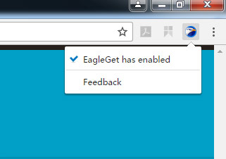 Eagleget chrome extension